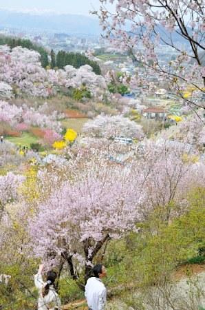 20110419-00000002-jijp-000-view.jpg